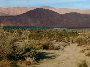 The Springs at Borrego - Borrego Springs CA