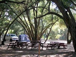 Ortega Oaks RV Park & Campground - Lake Elsinore CA