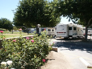 Castaic Lake RV Park - Castaic CA