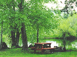 Hat Creek Hereford Ranch RV Park - Hat Creek CA