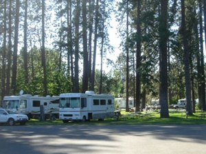 McCloud Dance Country RV Resort - McCloud CA