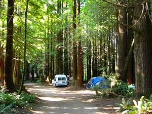 Crescent City / Redwoods KOA - Crescent City CA