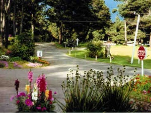 Pomo RV Park & Campground - Fort Bragg CA