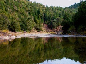 Redwoods River Resort - Leggett CA