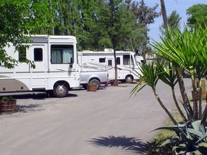 Wine Country RV Park - Sonoma Grove - Rohnert Park CA
