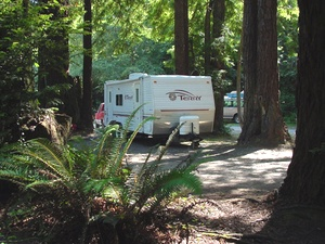 Emerald Forest RV Park