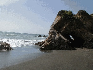 Westport Beach RV and Camping - Westport CA