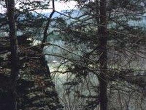 Yanasochee Campground