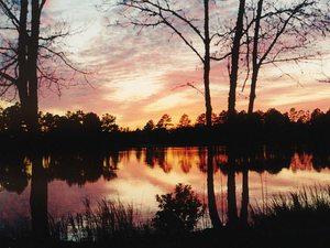 Lake Harmony RV Park