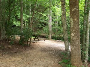 Turkey Creek Family Campground - Almond NC