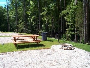 Little Eagle RV Park - Buchanan TN