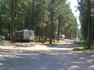 Big Pine Campground - Custer SD
