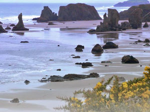 Beach Loop RV Village - Bandon OR