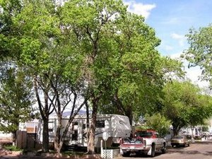 El Rancho RV & Mobile Home Park - Albuquerque NM