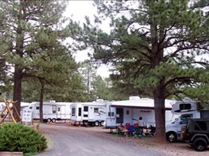 Williams / Exit 167 / Circle Pines KOA