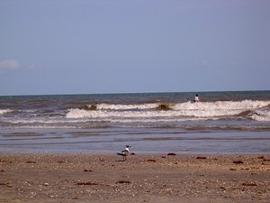 Texas City Tx Beach The Best Beaches In World