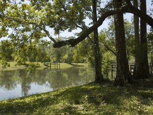 Suwannee River Hideaway