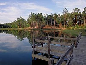 General Coffee State Park - Nicholls GA