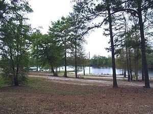 Rocky Comfort Plantation RV Park - Warrenton GA