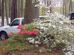 Brookwood RV Resort Park - Marietta GA