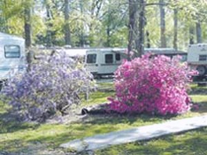 Punkin Park Campground - Hammond LA