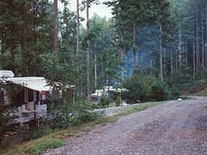 Black Forest Family Camping Resort - Cedar Mountain NC