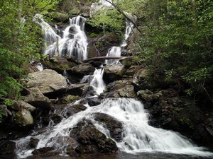 Catawba Falls Campground - Old Fort NC