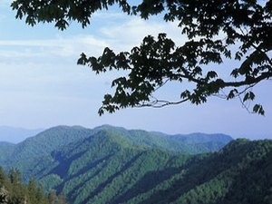 Trail's End RV Park - Waynesville NC