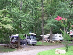 Holly Cove Campground & RV Park - Whittier NC