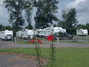 Ivys Cove RV Retreat - Russellville AR