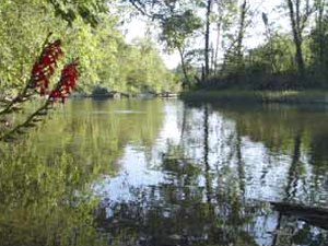 Caddo River Camping & Canoe Rental - Glenwood AR