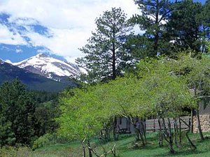 National Park Retreats - Estes Park CO
