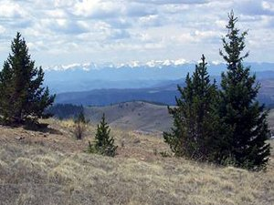 Diamond Campground & RV Park - Woodland Park CO