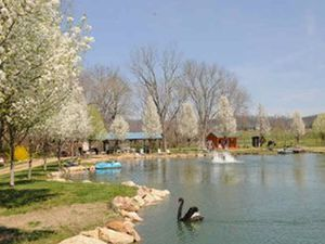 Around Pond RV Park - Baileyton TN