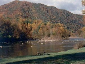 Nolichucky Gorge Campground - Erwin TN