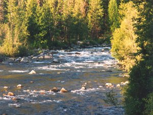 Icicle River RV Resort - Leavenworth WA