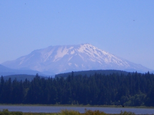 Mt.St Helens RV Park - Castle Rock WA