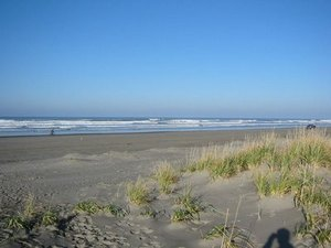 Anthonys Home Court RV Park & Cabins - Long Beach WA
