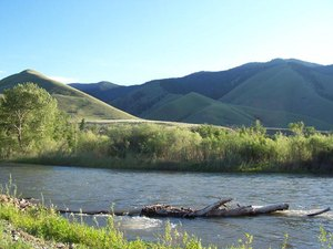 Wagonhammer RV Park and Campground - North Fork ID
