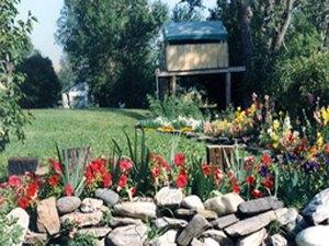 McLeod Resort