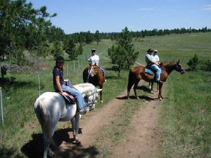 Country Charm Cabins & Corrals - Custer SD