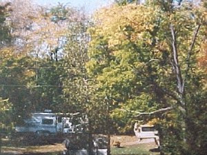 Honey Bear Hollow Campground