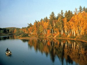 Sturgeon River Campground - Wolverine MI