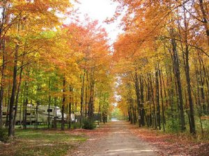 Lake of Dreams Campground - Merrill MI