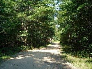Holly Tree Camper Park