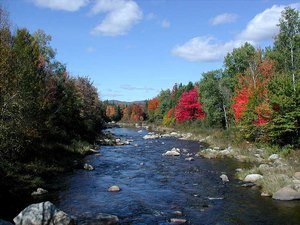 Apple Hill Campground - Bethlehem NH
