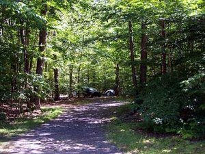 Lehigh Gorge Campground - White Haven PA