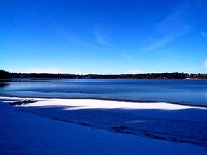 Black Pine Beach Resort - Pequot Lakes MN