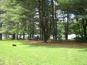 Shel-Al Camping Area - North Hampton NH