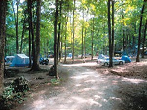 Green Valley Beach Campground - Newton NJ
